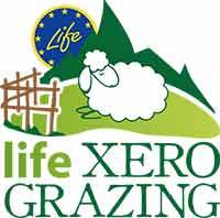 Life XERO GRAZING